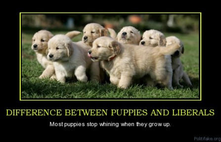 difference-between-puppies-and-liberals-puppies-stop-whining-political-poster-1294064730