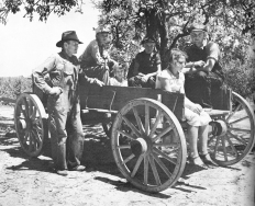 Family in a wagon Lee County August 1935