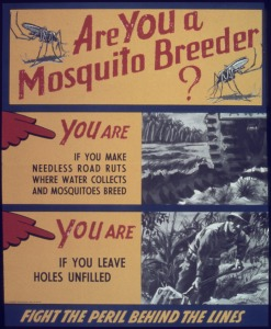 _Are_you_a_mosquito_breeder__-_NARA_-_513877